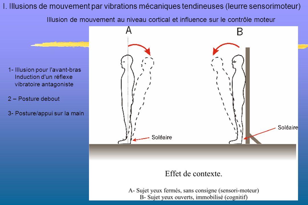 I. Illusions de mouvement par vibrations mécaniques tendineuses (leurre sensorimoteur)