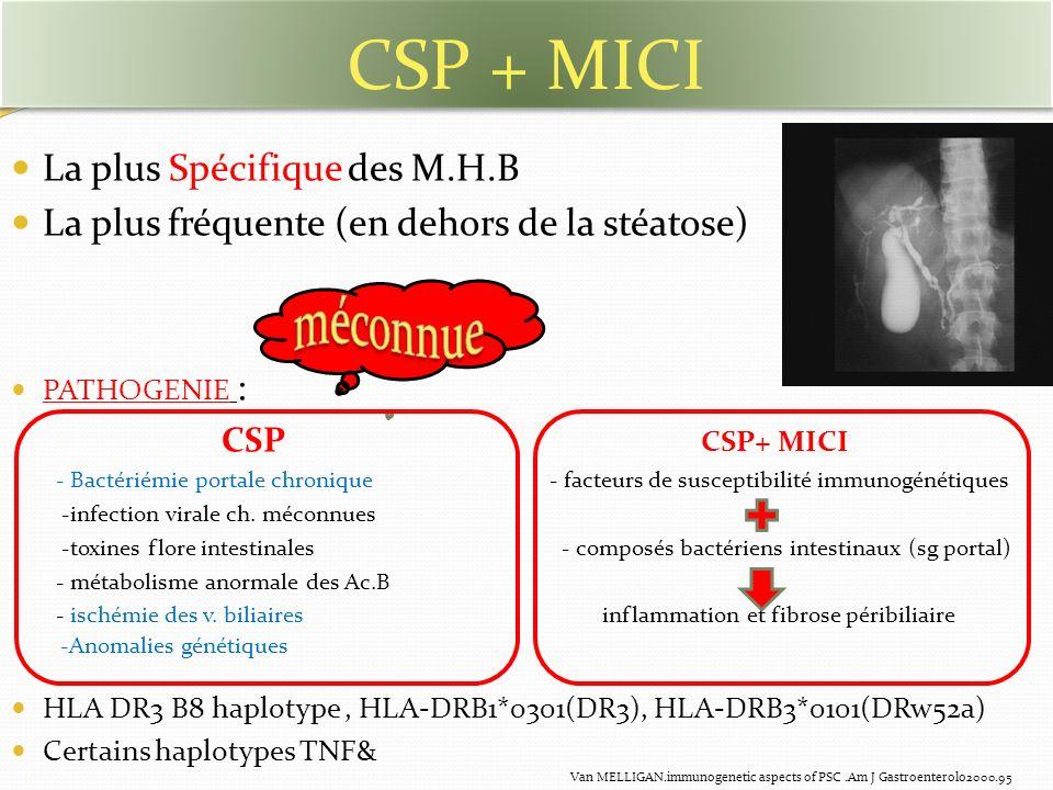 CSP + MICI La plus Spécifique des M.H.B