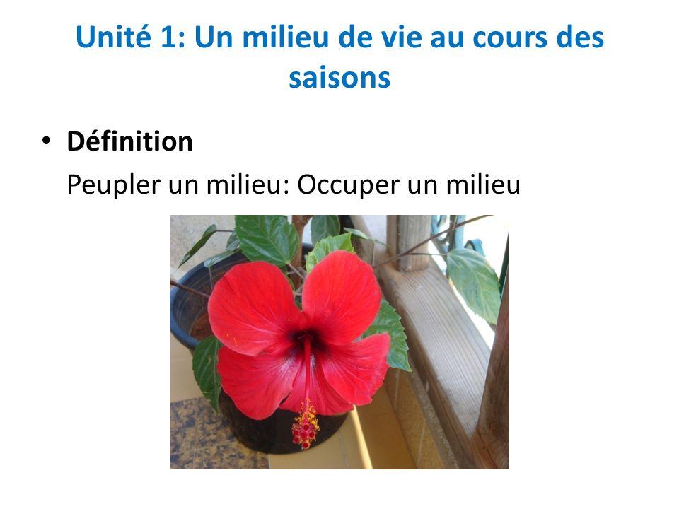 Unité 1: Un milieu de vie au cours des saisons