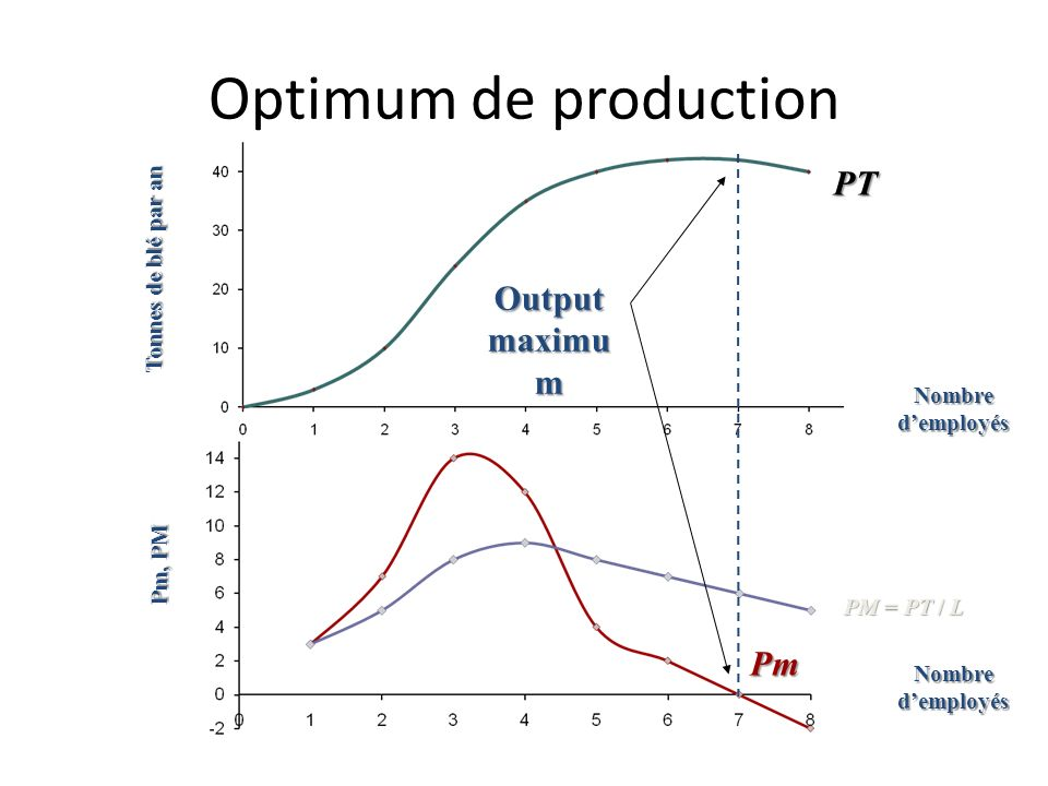 Optimum de production PT Output maximum Pm Tonnes de blé par an
