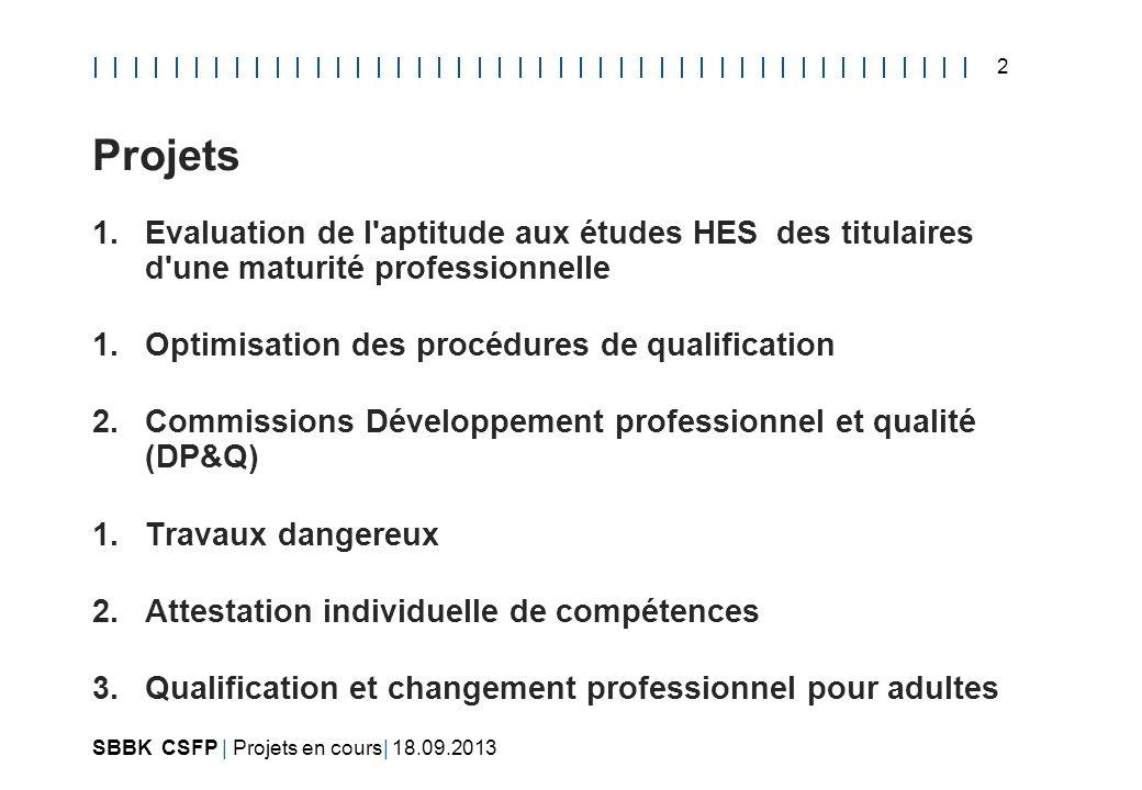 Projets Evaluation de l aptitude aux études HES des titulaires d une maturité professionnelle. Optimisation des procédures de qualification.