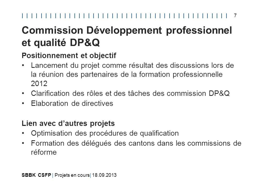 Commission Développement professionnel et qualité DP&Q
