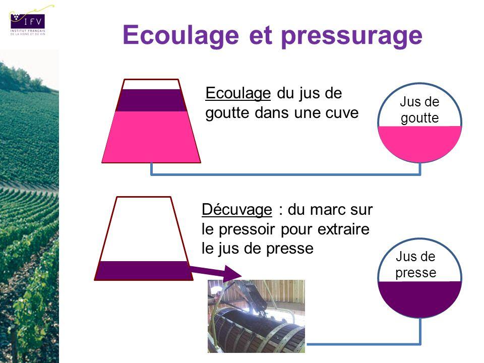 Ecoulage et pressurage