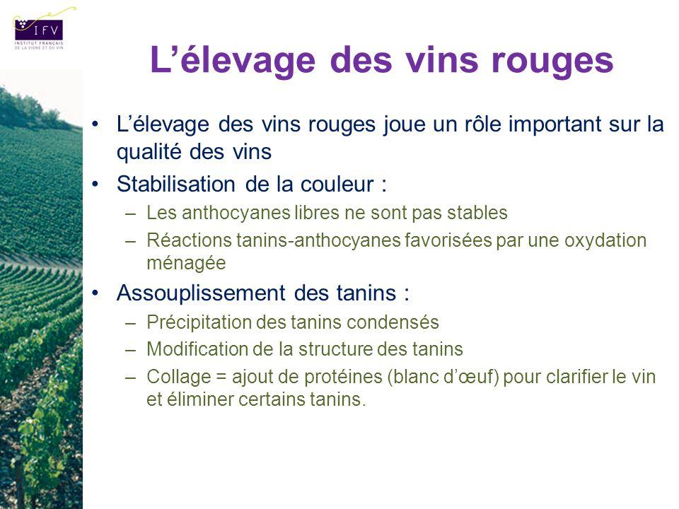 L'élevage des vins rouges