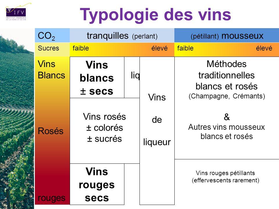 Typologie des vins Vins blancs ± secs Vins rouges secs CO2