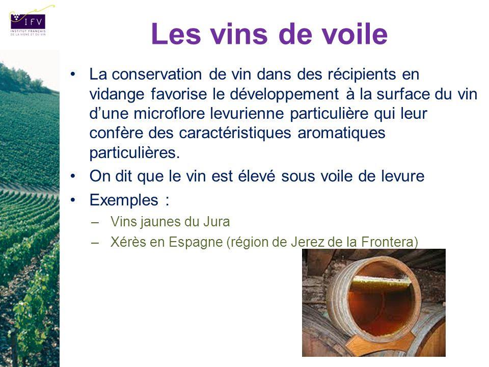 Les vins de voile