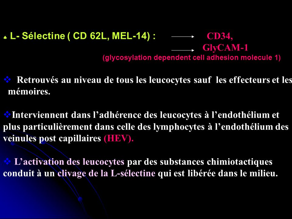 Retrouvés au niveau de tous les leucocytes sauf les effecteurs et les