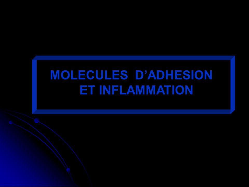 MOLECULES D'ADHESION ET INFLAMMATION