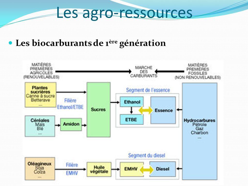 Les agro-ressources Les biocarburants de 1ère génération
