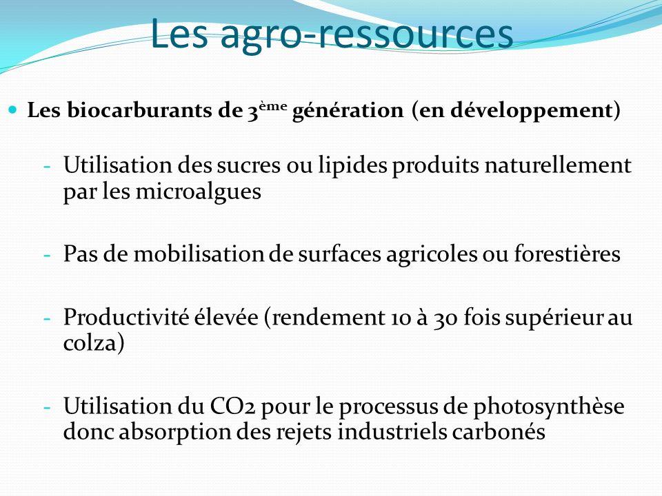 Les agro-ressources Les biocarburants de 3ème génération (en développement)