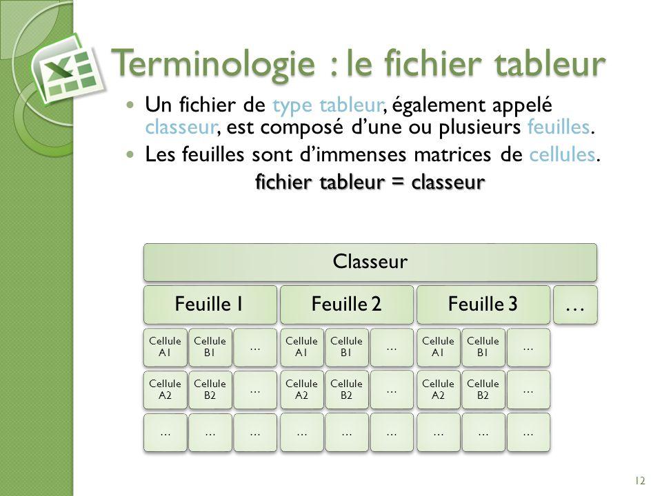 Terminologie : le fichier tableur