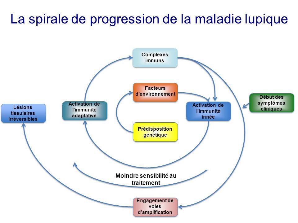 La spirale de progression de la maladie lupique