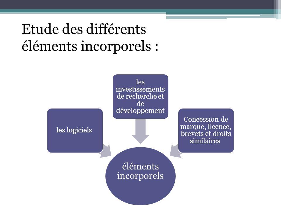 Etude des différents éléments incorporels :