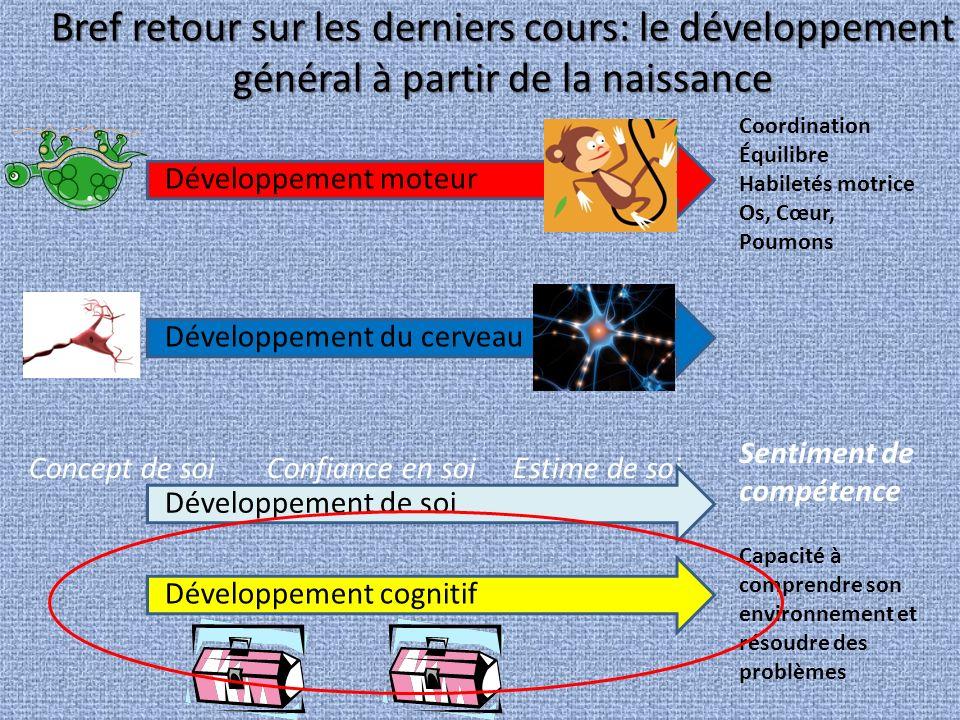 Bref retour sur les derniers cours: le développement général à partir de la naissance