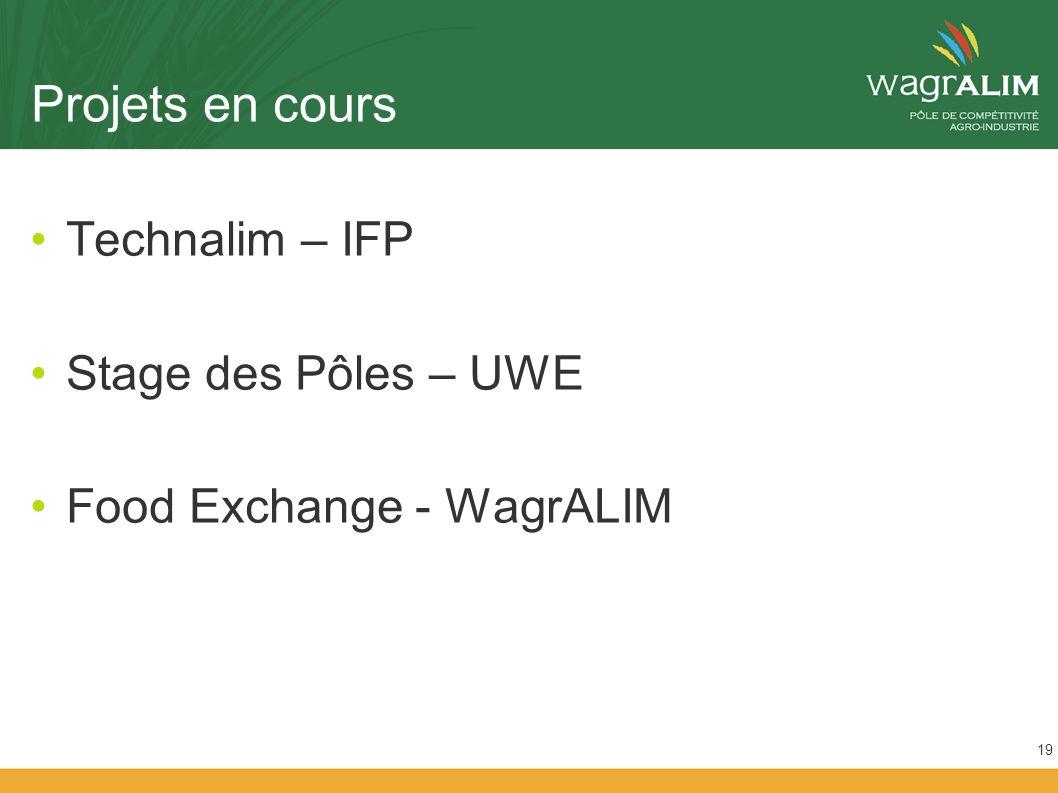 Projets en cours Technalim – IFP Stage des Pôles – UWE