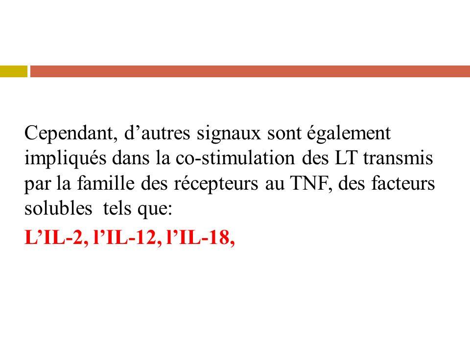 Cependant, d'autres signaux sont également impliqués dans la co-stimulation des LT transmis par la famille des récepteurs au TNF, des facteurs solubles tels que: L'IL-2, l'IL-12, l'IL-18,