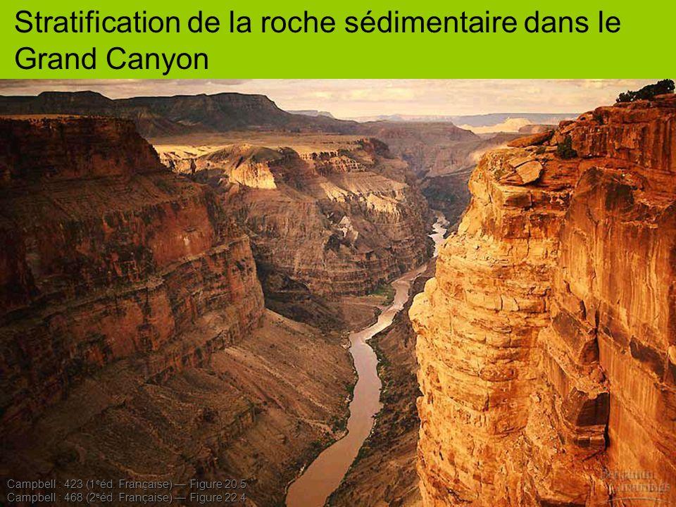 Stratification de la roche sédimentaire dans le Grand Canyon