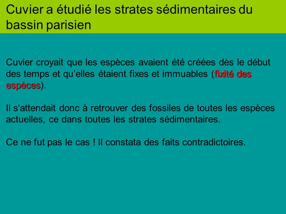 Cuvier a étudié les strates sédimentaires du bassin parisien