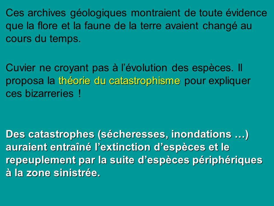 Ces archives géologiques montraient de toute évidence que la flore et la faune de la terre avaient changé au cours du temps.