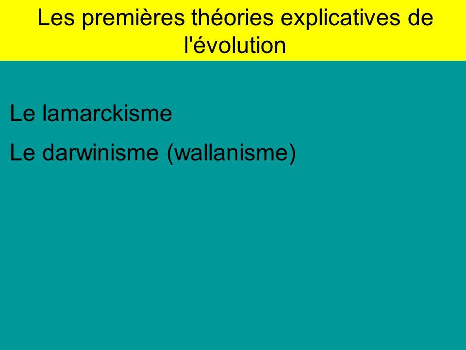 Les premières théories explicatives de l évolution