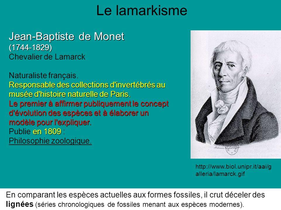 Le lamarkisme Jean-Baptiste de Monet (1744-1829) Chevalier de Lamarck