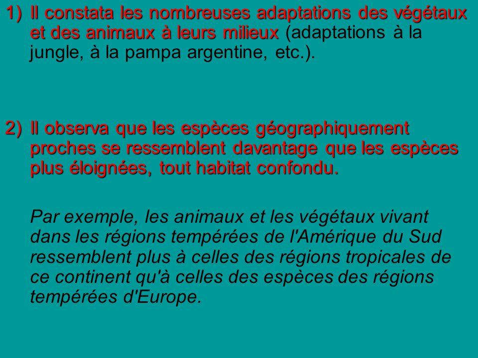 1) Il constata les nombreuses adaptations des végétaux et des animaux à leurs milieux (adaptations à la jungle, à la pampa argentine, etc.).