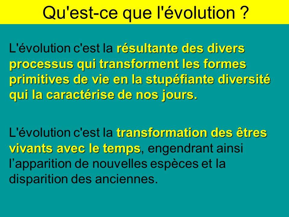 Qu est-ce que l évolution