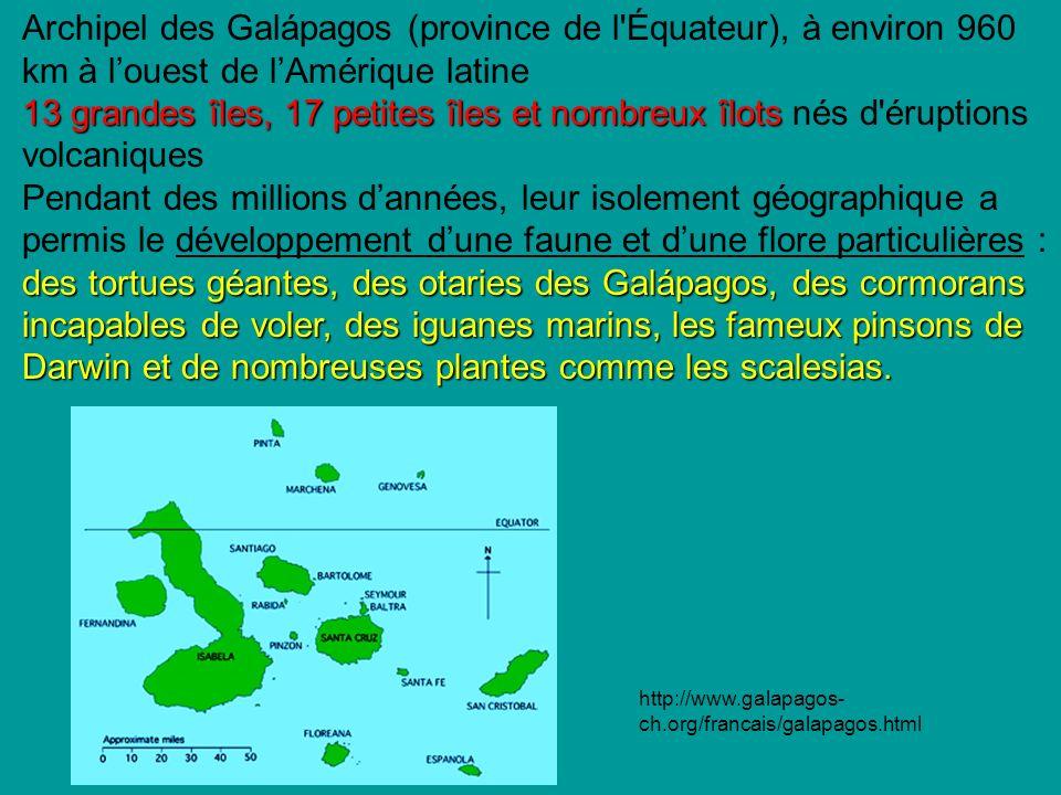 Archipel des Galápagos (province de l Équateur), à environ 960 km à l'ouest de l'Amérique latine