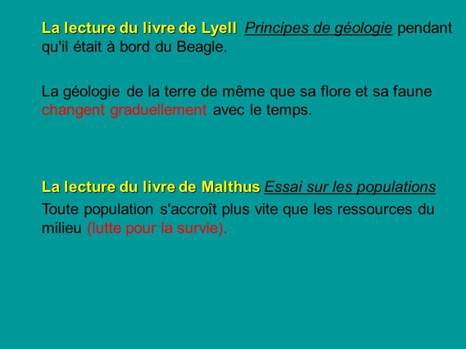 La lecture du livre de Malthus Essai sur les populations