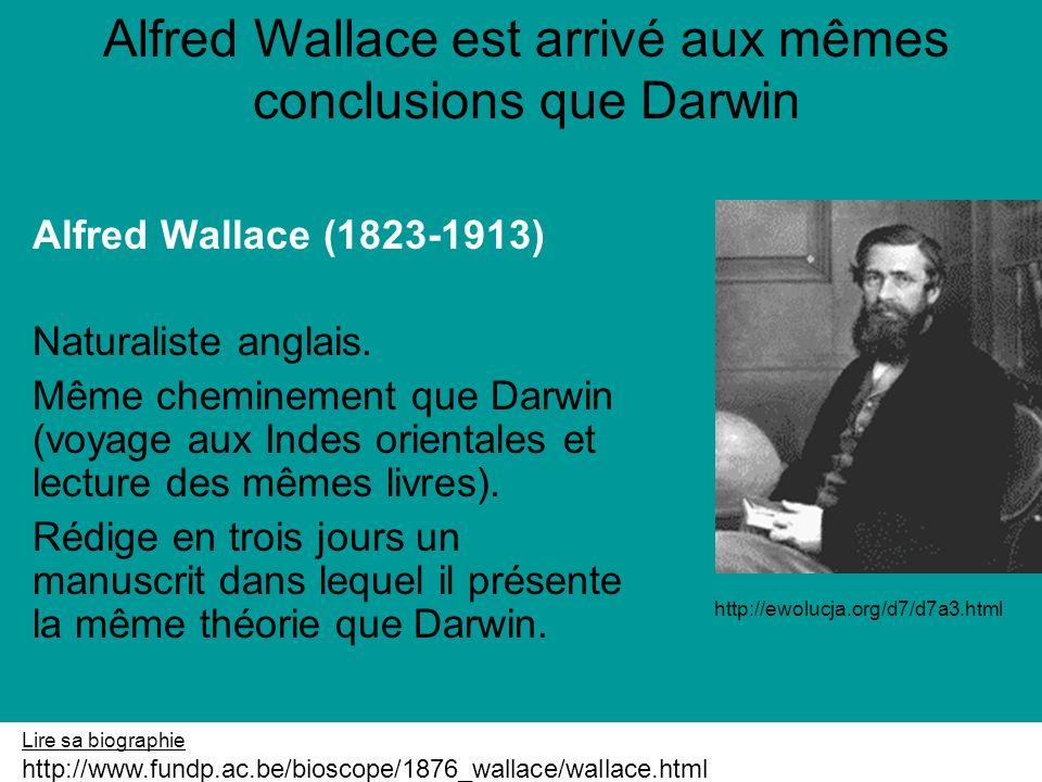 Alfred Wallace est arrivé aux mêmes conclusions que Darwin
