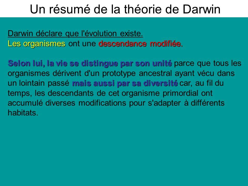 Un résumé de la théorie de Darwin
