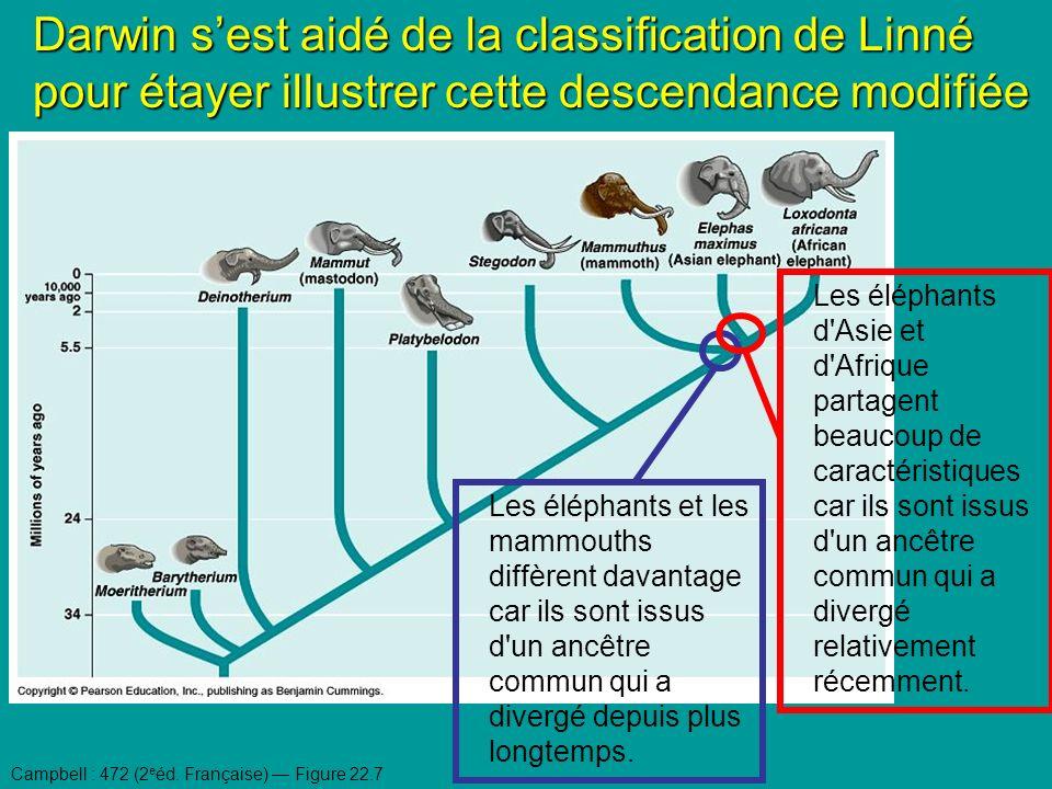 Darwin s'est aidé de la classification de Linné pour étayer illustrer cette descendance modifiée