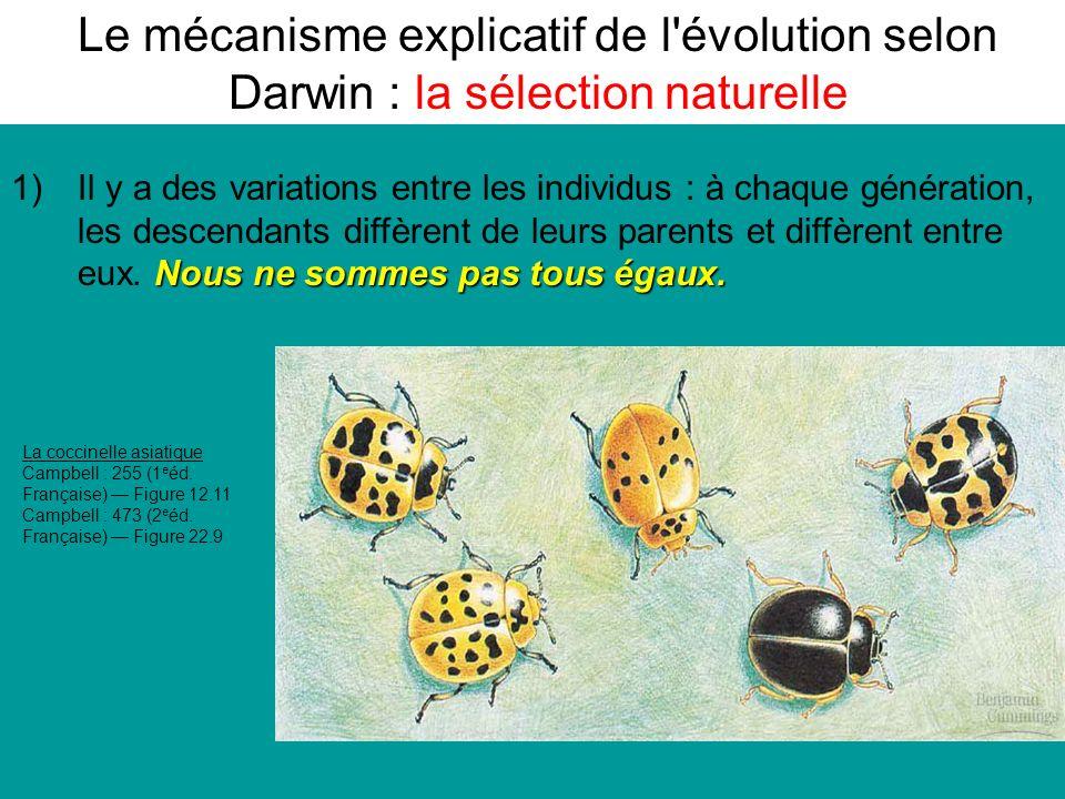 Le mécanisme explicatif de l évolution selon Darwin : la sélection naturelle