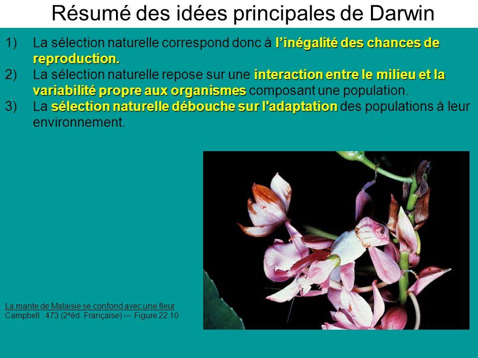 Résumé des idées principales de Darwin