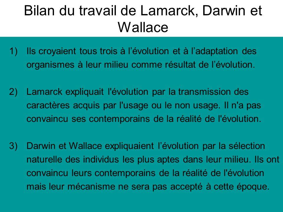 Bilan du travail de Lamarck, Darwin et Wallace