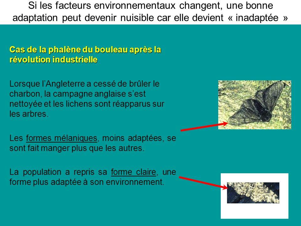 Si les facteurs environnementaux changent, une bonne adaptation peut devenir nuisible car elle devient « inadaptée »