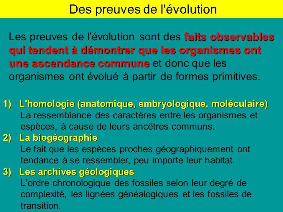 Des preuves de l évolution