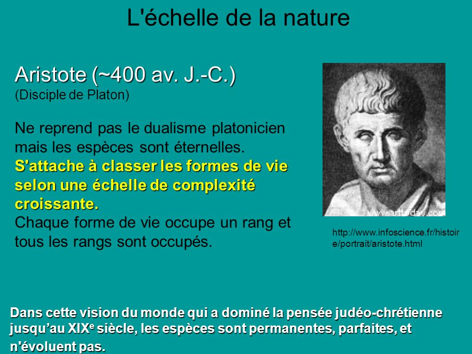 L échelle de la nature Aristote (~400 av. J.-C.)