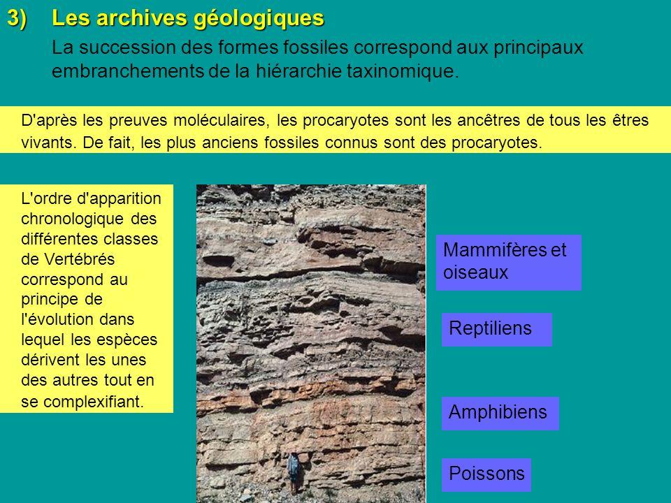 3) Les archives géologiques