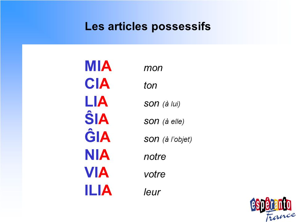 Les articles possessifs