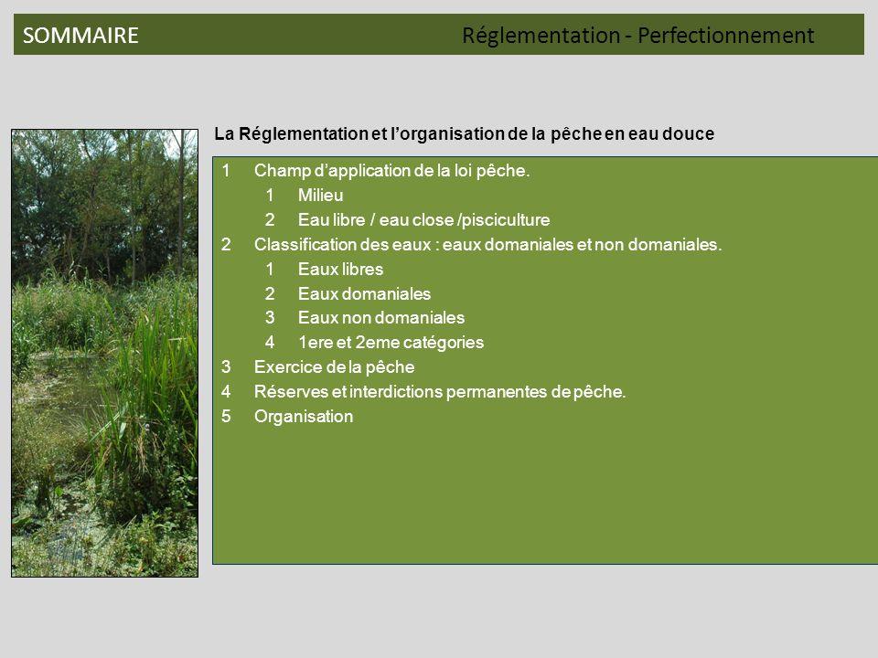SOMMAIRE Réglementation - Perfectionnement