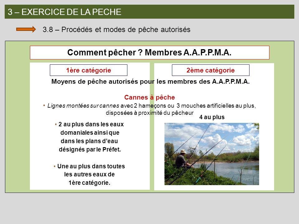 Comment pêcher Membres A.A.P.P.M.A.
