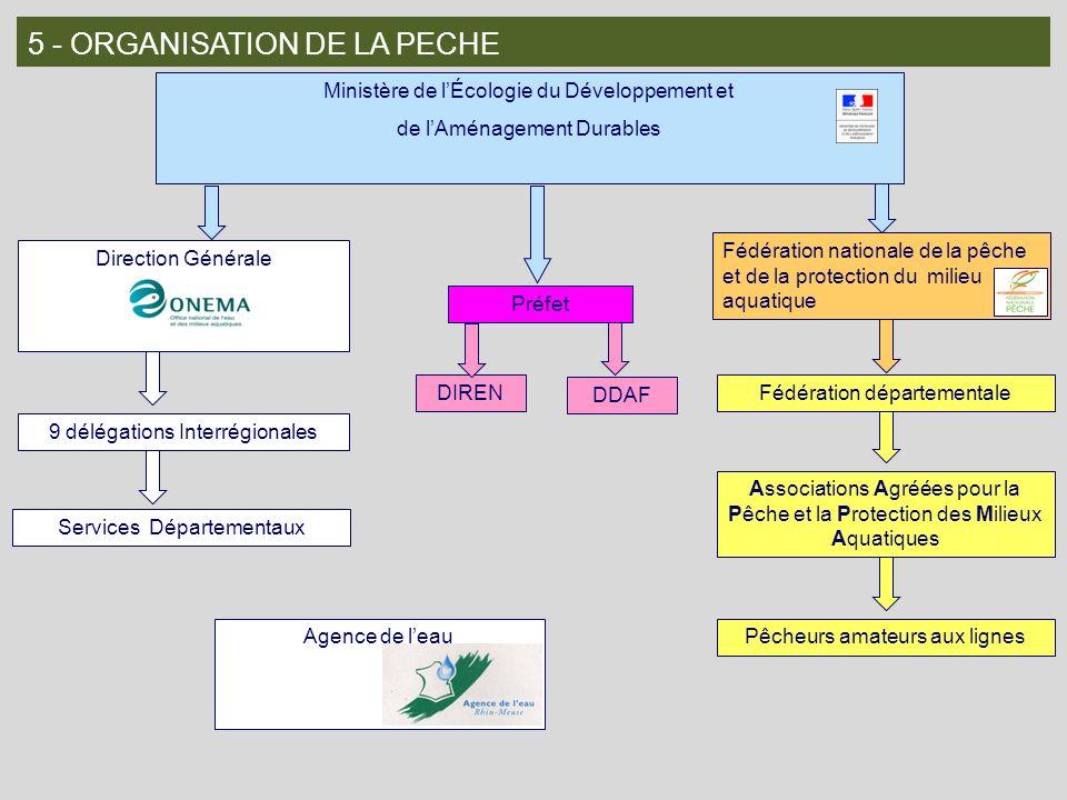5 - ORGANISATION DE LA PECHE