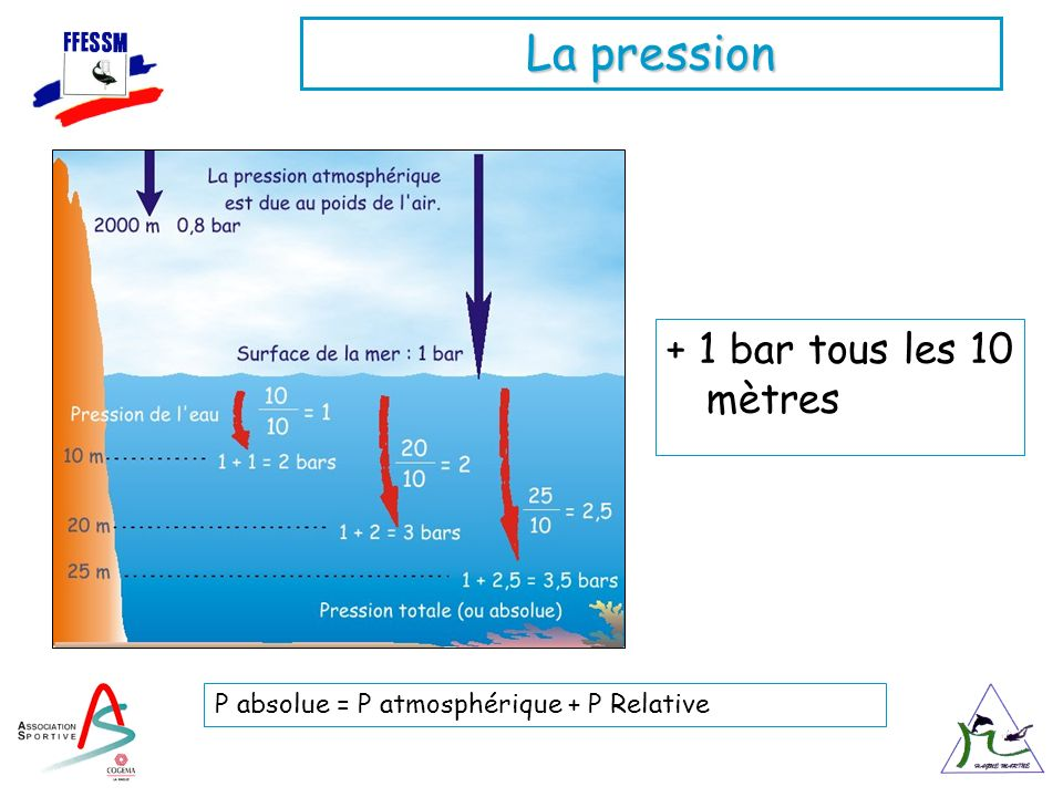 La pression + 1 bar tous les 10 mètres