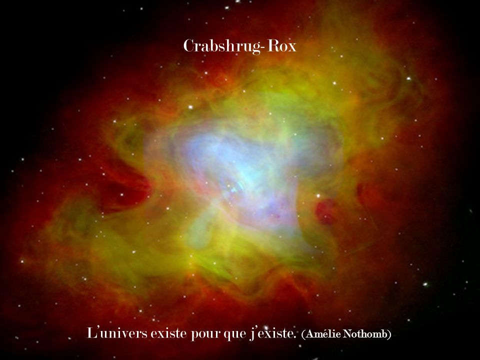 Crabshrug-Rox L'univers existe pour que j'existe. (Amélie Nothomb)