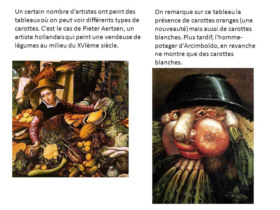 Un certain nombre d artistes ont peint des tableaux où on peut voir différents types de carottes. C est le cas de Pieter Aertsen, un artiste hollandais qui peint une vendeuse de légumes au milieu du XVIème siècle.
