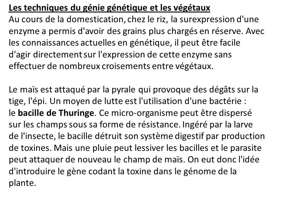 Les techniques du génie génétique et les végétaux