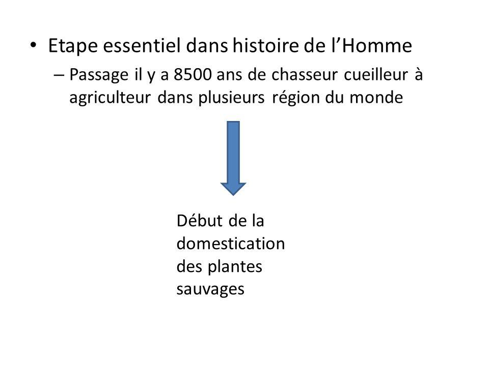 Etape essentiel dans histoire de l'Homme