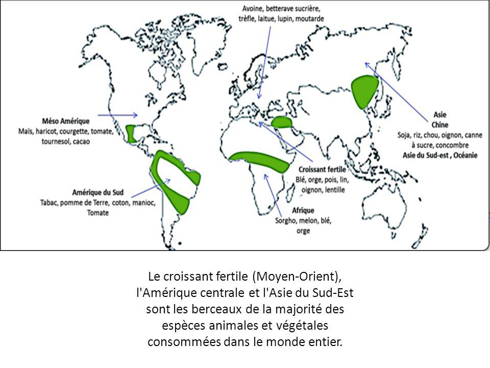 Le croissant fertile (Moyen-Orient), l Amérique centrale et l Asie du Sud-Est sont les berceaux de la majorité des espèces animales et végétales consommées dans le monde entier.