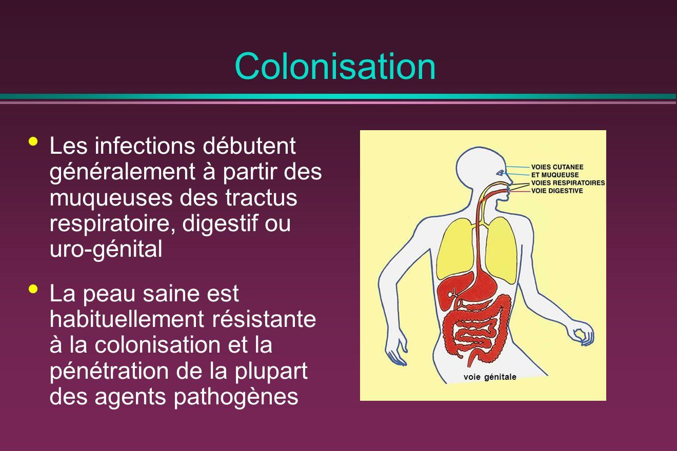 Colonisation Les infections débutent généralement à partir des muqueuses des tractus respiratoire, digestif ou uro-génital.
